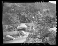 View of grounds and home of Sam Rummel after his murder, Los Angeles, Calif., 1950