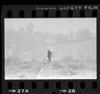 Ed Costanzo, walking his two dogs on a hillside in Elysian Park on a smoggy day in Los Angeles, Calif., 1980