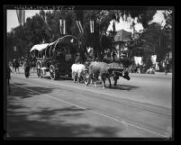 Oxen pulling covered wagon in Pioneer Days Parade in Santa Monica, Calif., 1931