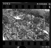 Outdoor art show in Westwood, Calif., 1978