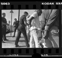Los Angeles Southeast Division police officers arresting four male youths in Los Angeles, Calif., 1980