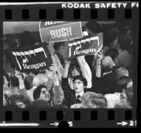 Ronald Reagan supporters with campaign signs in Hebrew celebrating his victory, Calif., 1980