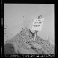"""Sign on top of groundhog hole declaring """"Do Not Disturb!  For Another Six Weeks,"""" 1964"""