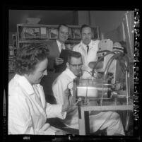 Carol Ledbetter subjecting guinea pig to smog test under direction of Dr. William Blackmore, Henry Swan Jr., Lowell Wayne, Calif., 1964