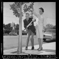 George Gobel with Phyllis Jackson pruning a tree on Ventura Blvd. for beautification campaign in Encino, Calif., 1964
