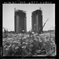 Construction on skeleton of the 27 story twin towers of Century Towers apartments in Century City, Calif., 1964