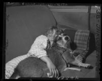 Homeless Linda Henderson asleep in auto with her dog Butch in Los Angeles, Calif., 1947