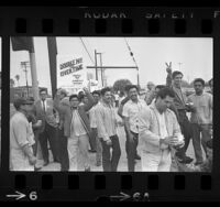 Striking auto workers out front of General Motor's Fisher Body plant in Van Nuys, Calif., 1964