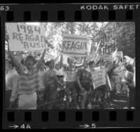 Ronald Reagan supporters during Walter Mondale's campaign stop at USC, 1984