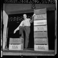 Upland Lemon Growers Association of California employee standing with wooden fruit crates, Calif., 1965