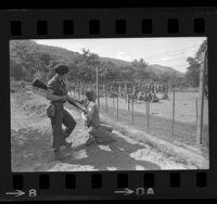 Marines watching interrogation tactics in simulated Viet Cong POW camp at Camp Pendleton, Calif., 1966