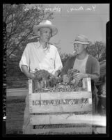 Yee Ming and Hing Wong inspect onions to aid in China relief, Los Angeles, Calif., 1942