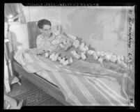Raymond Fedderson in bed with his baby chicks during power failure in Los Angeles, Calif., 1944
