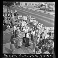 Striking social workers picketing Los Angeles County Board of Supervisors meeting, Calif., 1966