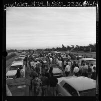 UCLA students halting traffic on the 405 Freeway after learning USC got Rose Bowl bid, Los Angeles, Calif., 1966
