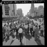 Nobel laureate Linus Pauling leading peace parade down Wilshire Blvd. in Los Angeles, Calif., 1967