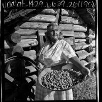Eva Hendricks, a Miwuk Indian, with a tray of acorns in Tuolumne County, Calif., 1969