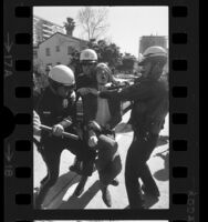 Police restraining a marcher during Chicago Seven protest march in Westwood, Calif., 1970