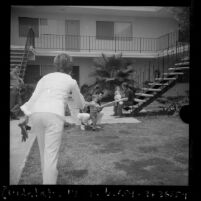 Los Angeles Dodgers' Ted Sizemore and Billy Grabarkewitz playing ball at home with their wives and children, Calif., 1970