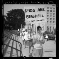 "Wives of Los Angeles policemen picketing for police pay raise with ""pigs are beautiful"" placards, 1970"
