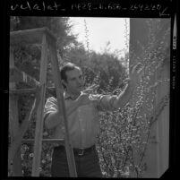 Film director Brian De Palma, 1/2 length portrait, 1970