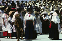 Cotzocon-Sierra, 1985