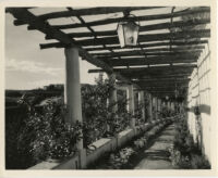 James R. Martin residence, pergola, Los Angeles, 1931