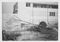 J. N. Brown House, delivery of tree