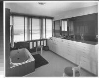 J. N. Brown House, interior master bathroom