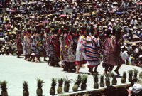 Tuxtepec, women dancers and pineapples, 1985