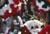 Saints Day, feathered headdresses surrounding a man reading, 1982
