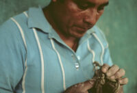 Ocotlan, modeling (sculpture) clay figurines, 1982