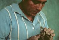 Ocotlan, modeling (sculpture) clay figurines, 1982