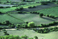 Oaxaca, aerial view of farmland, 1982 or 1985
