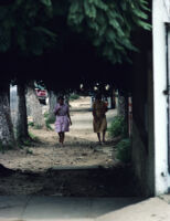 Oaxaca, women walking up dirt path, 1982 or 1985
