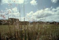 Monte Albán Site, plaza[?], 1982 or 1985