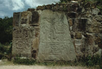Monte Albán Site, carved glyphs, 1982 or 1985