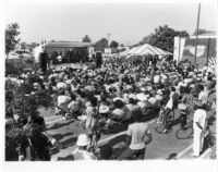 Photograph of audience at the 1981 Watts Towers Jazz Festival [descriptive]