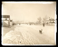 Snow covered road, houses/buildings, dog in foreground