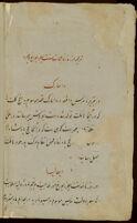 Tarjumah az rūznāmajāt-i Sint Piṭirzbūrgh va ghayrihi
