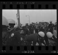 Police grab protesters at Century Plaza during President Johnson's visit as journalists watch. 1967.