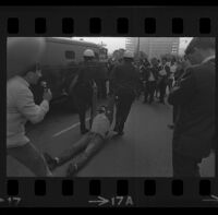 Protester dragged by police on Avenue of the Stars outside of Century Plaza Hotel, where President Johnson is speaking. B. 1967.