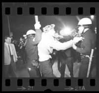 Protester hit by police outside of Century Plaza during President Johnson's visit. 1967.