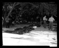 Police and photographers outside of the ruins of Fountain of the World headquarters look at bodies of the victims of the bombing. B. 1958.