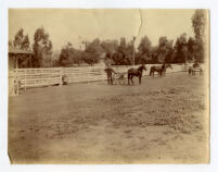 Chandler Home, W. 28th St, Stables and pasture