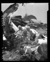 Wreckage of Standard Airlines C-46 is examined for clues regarding the cause of the crash, 1949.