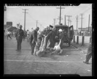 Police drag MGM protesters to police wagon, 1946.