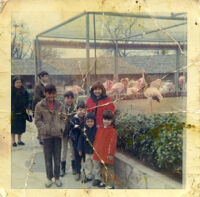 Christmas at the zoo with the kids