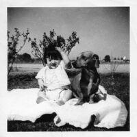 Baby with dog in Phoenix, AZ