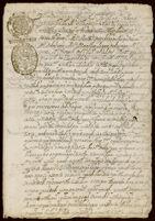 Declaracion en favor de Maria Augustina de la Cruz, de Temascatitla